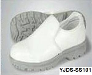 YJDS-SS101